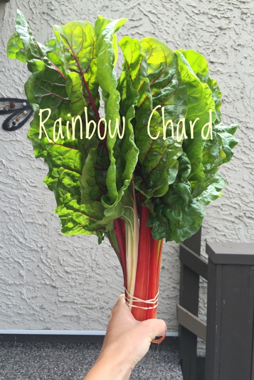 Rainbow Chard Writing